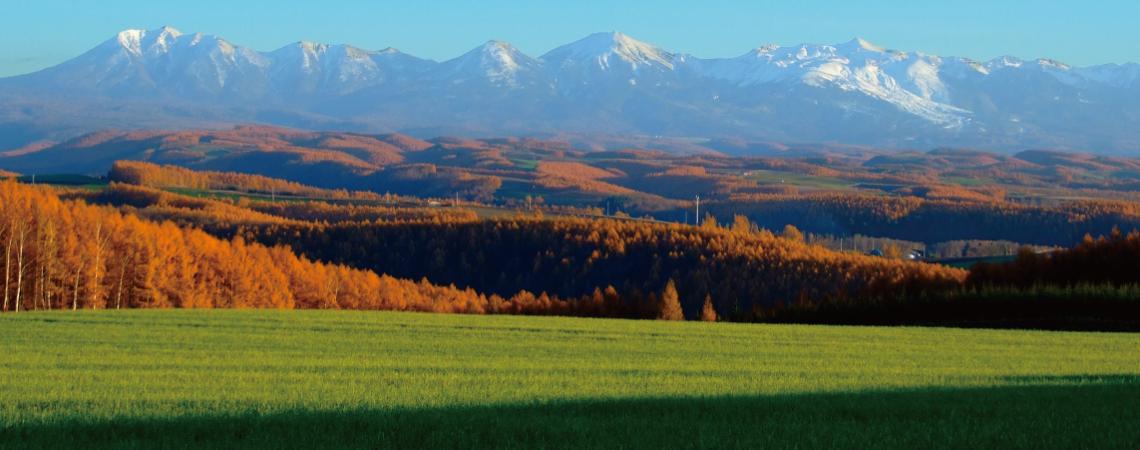 冬を待つ大地と大雪山